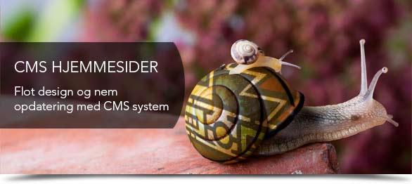 CMS hjemmesidesystem