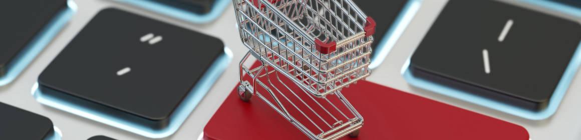 Hvordan bygger man en Webshop