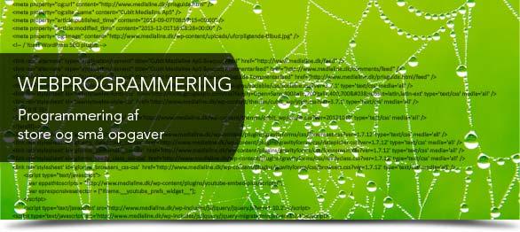 webprogrammering tilbydes